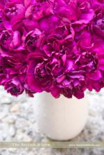 wedding flowers florist- Carnations
